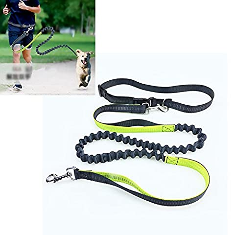 Yamde Hands Free Dog Leash for Running Jogging Walking Hiking Durable Bungee Leash with Handle - Reflective Stitching Adjustable Length 60
