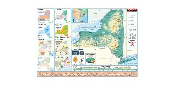 Amazon Com Universal Map 26434 New York Thematic Intermediate Wall