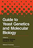 img - for Guide to Yeast Genetics and Molecular Biology, Volume 194: Volume 194: Guide to Yeast Genetics and Molecular Biology (Methods in Enzymology, Vol.194) book / textbook / text book