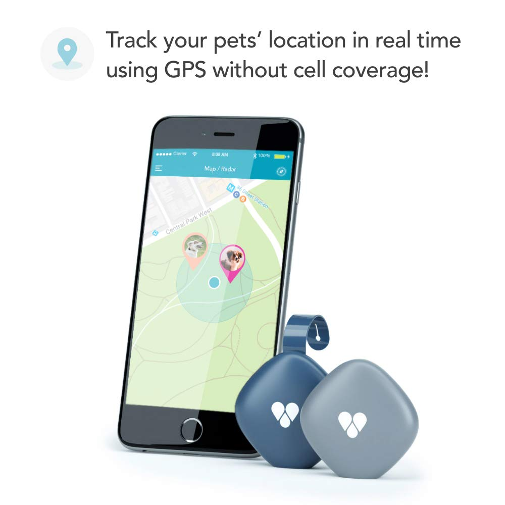 Findster Duo+ Pet Tracker Free of Monthly Fees - GPS Tracking Collar for Dogs and Cats & Pet Activity Monitor - Tracks 2 Pets by Findster (Image #2)