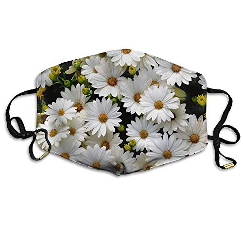 Beautiful Daisies Flowers Unisex Face Mask Earloop Dust Facemask Cycling Reusable Mask