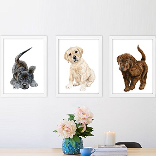 Set of 3 Puppy Nursery Prints, Baby Animal Portraits - Black, Yellow and Chocolate Labrador Retrievers - Various Sizes - International Options Usps Shipping
