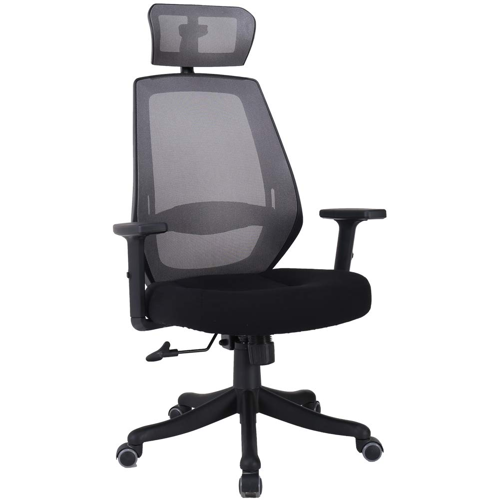 Veigar Ergonomic High Back Mesh Office Chair with Adjustable Armrest Computer Chair Desk Chair Task Chair Swivel Chair (Black1)