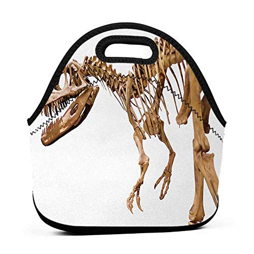 Travel Case Lunchbox with Zip Dinosaur,Archeology Museum Theme Wild Tyrannosaurus Rex Skeleton Jurassic Period,Pale Caramel White,lunch bag for guys