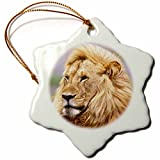 3dRose orn_83907_1 Male African Lion, Tanzania Africa NA02 DNO0332 David Northcott Snowflake Porcelain Ornament, 3-Inch