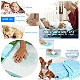 Waymine One-Off Disposble Thickening Pets Diapers Pet Indoor Toilet Training Pad Pads Absorbent Puppy Mat (C)