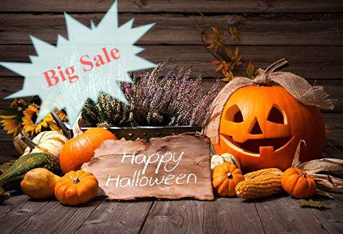 (Baocicco 7x5ft Vinyl Halloween Backdrop Pumpkin Carriage Photography Background Ancient Building Blooming Flower Gloomy Scene Backdrop Children Baby Adults Portraits Photo)