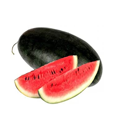Plant Seeds for Planting 10Pcs Glass Ball Watermelon Seeds Fantastic Edible Delicious Fruit Seeds : Garden & Outdoor