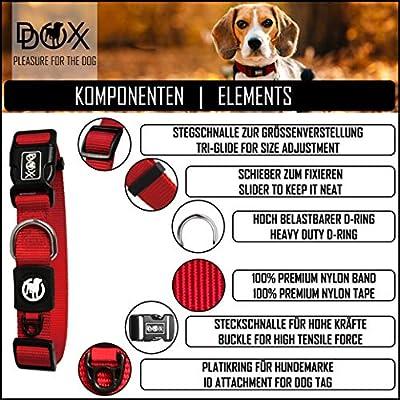 DDOXX Collar Perro Nylon, Ajustable | Diferentes Colores & Tamaños ...