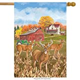 "Fall Deer House Flag Countryside Farmhouse Meadow 28"" x 40"" Briarwood Lane"