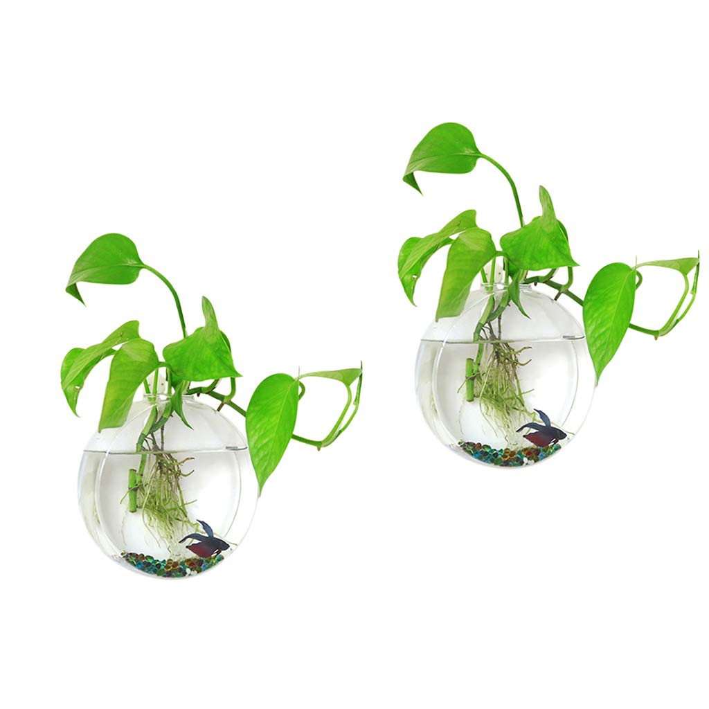 Ivolador 2PCS Wall Hanging Glass Plant Terrarium Container Round Shape Perfect for Home Garden Decoration Wedding