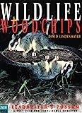Wildlife and Woodchips, Lindenmayer, David, 0868402311