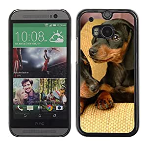 Hot Style Cell Phone PC Hard Case Cover // M00000436 Dogs Animals Pattern // HTC ONE M8