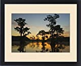 Framed Print of Sunrise and bald cypress (Taxodium distichum) trees with Spanish moss, Caddo