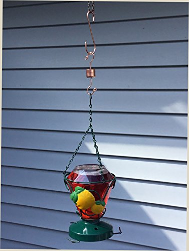 Hummingbird Feeder Ant Trap Moat Heavy Duty S Hook