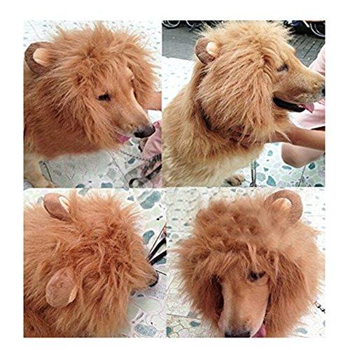 Gimil (Dog Halloween Costumes Lion)