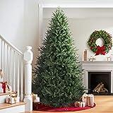 Balsam Hill Saratoga Spruce Artificial Christmas Tree, 7 Feet, Unlit
