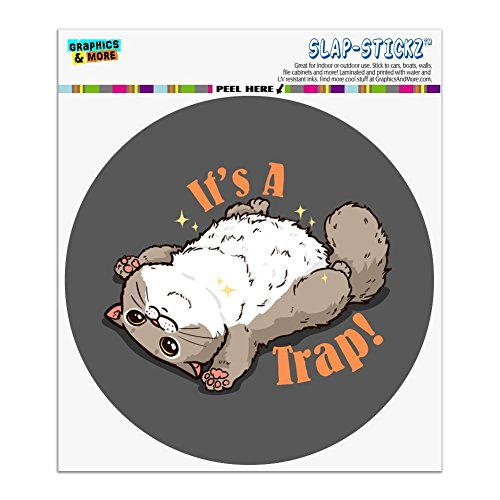 Graphics and More It's a Trap Cat Belly Rubs Funny Automotive Car Window Locker Circle Bumper Sticker