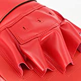 Boxing Curved Focus Punching Mitts- Leather