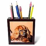 3dRose Danita Delimont - Dogs - Cavalier King Charles Spaniel on pillow - 5 inch tile pen holder (ph_258145_1)