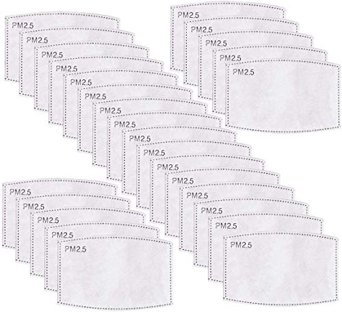 20PCS PCS Adult PM2.5