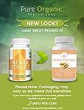 Papaya Extract (100 Capsules, 400 mg Serving) by