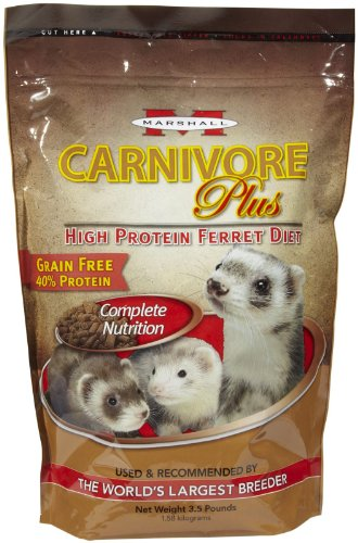 marshall-carnivore-plus-high-protein-diet-ferret-food-35-lb