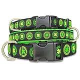 Irish Celtic Dog Collar with Clover, My Pet Supplies