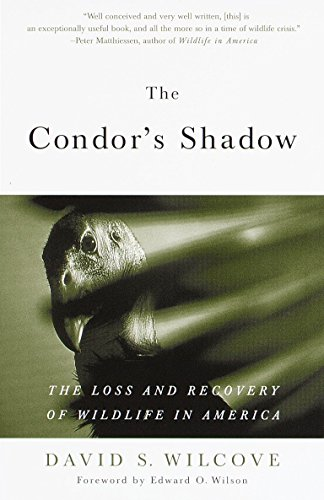 The Condor's Shadow: The Loss and Recovery of Wildlife in America by Anchor