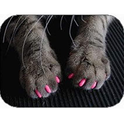 Cvthfyky Cubierta de uñas para Mascotas Cubierta de uñas ...
