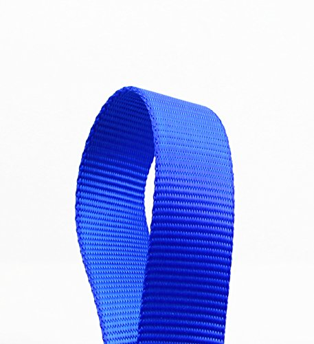 Image of BIG SMILE PAW 4' Dog Leash with Traffic Padded Handle (Blue)