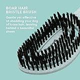 BioSilk for Dogs Eco-Friendly Boar Hair Bristle