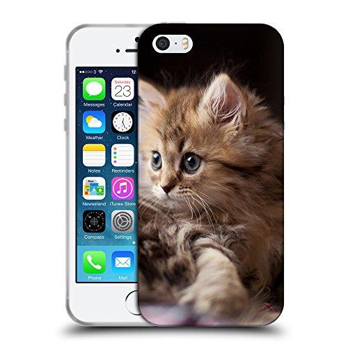Just Phone Cases Coque de Protection TPU Silicone Case pour // V00004226 Petit chaton pelucheux mignon // Apple iPhone 5 5S 5G SE