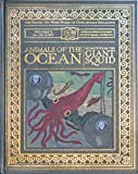 Animals of the Ocean: In Particular the Giant Squid