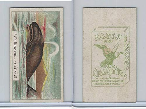 B116-151 BAT Eagle Cigarettes, Animals & Birds, 1912, 35 Whale