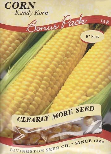 Kandy Korn Corn Seeds - 13 grams -