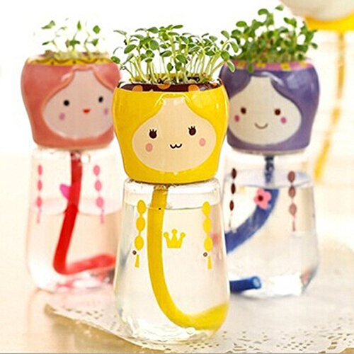 Wholesale 10pcs/lot Indoor DIY Mini Self-watering Bonsai with Ceramic Plants Pot Clover Seeds for Home Office Desktop Decoration Seeds for $<!--$49.49-->