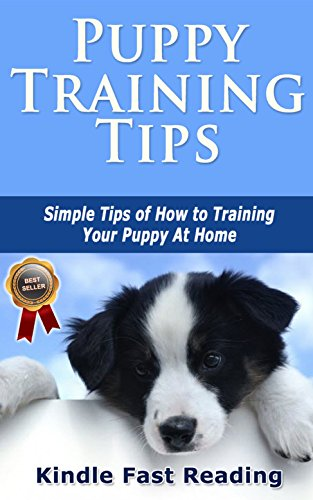 Dog Tips Training (Puppy Training Tips: Simple Tips of How to Training Your Puppy At Home)