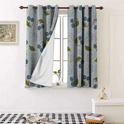 - Fruits Decorative Curtains for Living Room Cherry Blooms Leaves Summer Yummy Kitchen Garden Delicious Artsy Graphic Curtains Kids Room W72 x L72 Inch Blue Grey Olive Green