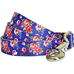 """Blueberry Pet Durable Spring Scent Inspired Rose Print Irish Blue Dog Leash 5 ft x 3/4"""", Medium, Leashes for Dogs"""