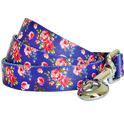 - Blueberry Pet Durable Spring Scent Inspired Rose Print Irish Blue Dog Leash 5 ft x 3/4