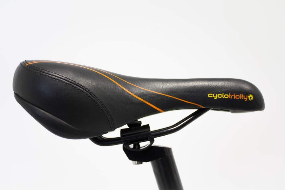 ddab494bab9 Cyclotricity Electric Bike, Stealth 1000w 16ah 20