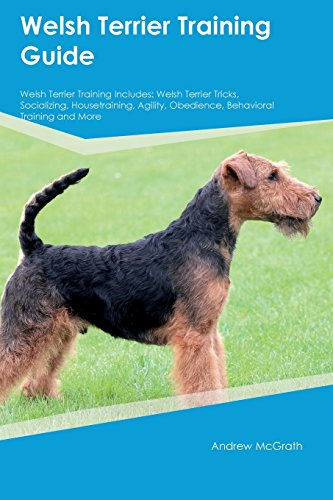 Welsh Terrier Training Guide Welsh Terrier Training Includes: Welsh Terrier Tricks, Socializing, Housetraining, Agility, Obedience, Behavioral Training and ()