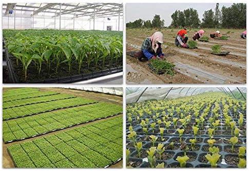 JVSISM 10 Pi/èCes S/éRies 72 Cellules Semis D/éMarreur Plateau Graine Germination Plante Pots de Fleurs P/éPini/èRe Cultiver Bo?Te Propagation pour Jardin