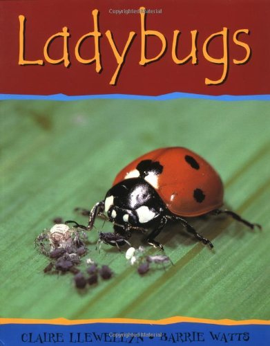 Ladybugs (Minibeasts) by Claire Llewellyn (2002-03-23) - Claire Ladybug