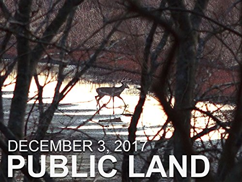 December 3 - Public Land: River Bottom Bucks, Natural Browse Food Source (Bottom Buck River)
