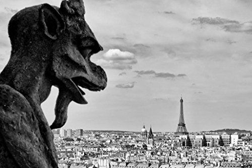 Gargoyle Notre Dame Cathedral Paris France Black and White Photo Art Print Poster 36x24 inch