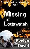 Missing in Lottawatah (Brianna Sullivan Mysteries Book 7)