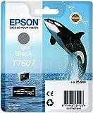 Epson T7607 Cartuccia, Nero Chiaro