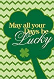 Morigins Lucky Clovers Double-Sided Decorative St. Patrick's Day House Flag 28''x40''